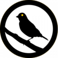 Canary-logo.png