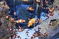 Capetown - Two Oceans Aquarium IMG 9440.JPG