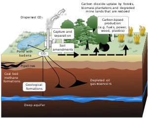 Schematic showing both terrestrial and geologi...