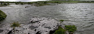 Turlough (lake) Type of disappearing lake found in limestone areas of Ireland