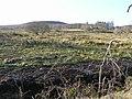 Carrickrevagh Townland - geograph.org.uk - 1118308.jpg