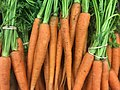 Carrots on Display.jpg