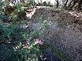 Castell de Requesens 2011 30.jpg