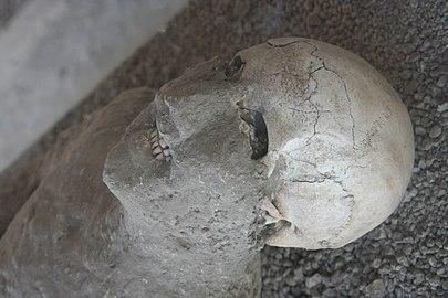 Casting of Pompeii victim.JPG