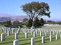 Cemetery in San Bruno, California.jpg