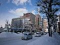 Central Hakodate - panoramio.jpg