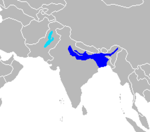 Indus river dolphin - Image: Cetacea range map South Asian river dolphin