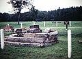 Chancellorsville Tavern Ruins (10483048384).jpg