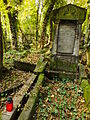 Chenstochov ------- Jewish Cemetery of Czestochowa ------- 150.JPG