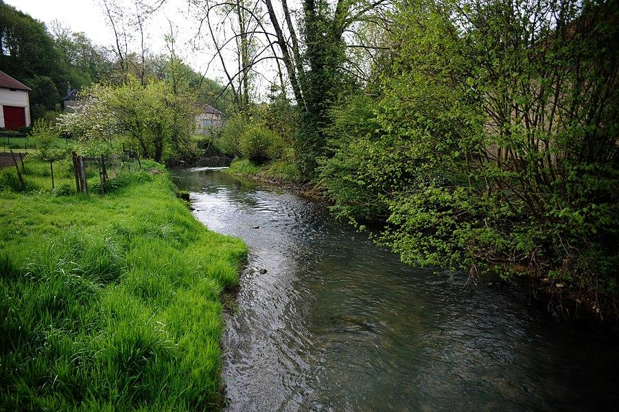 """Cheppy, le ruisseau """"L'aire"""" 2"""