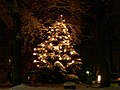 Christmas tree in Fischerhude.jpg