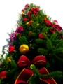 Christmas tree sxc hu, PNG transparency.png