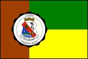 Cidra, Puerto Rico - Image: Cidra Flag