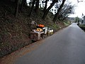 Citrus shop -Nara (4418577089).jpg