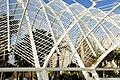 Ciutat de les Arts i les Ciències, València, Valencia, Spain - panoramio (23).jpg