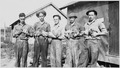 Civilian Conservation Corps, Third Corps Area, Jonesville, Virginia, Co. 2380 - poultry raising - NARA - 197149.tif