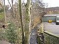 Clough House Mill Beck, Fartown - Huddersfield - geograph.org.uk - 346674.jpg