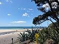 Coast south of Hot water beach.JPG