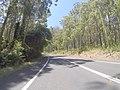 Cockwhy NSW 2539, Australia - panoramio (4).jpg