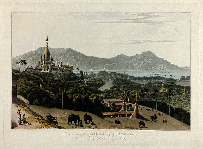 File:Coloured aquatint by William Daniell after James Kershaw, c. Wellcome V0050501.jpg