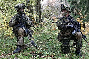 M84 camouflage pattern - Soldiers wearing both M/84 and M/11