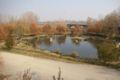 Corbins - Parc del Riu (Lleida).jpg