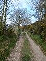 Country lane - geograph.org.uk - 390103.jpg