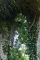 Court Friary South Transept South Window 2010 09 23.jpg