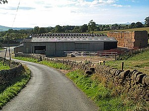 Cowshed near Denton. Industrial agriculture on...