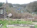 Crouch End allotments - geograph.org.uk - 1212406.jpg