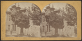 D.A. Bullard & Son's Office, Main Street, by L. F. Hurd.png