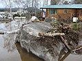Damage from Yukon River Flooding Eagle Alaska May 2009 (df7820f9-1780-4775-871b-0439e3b2c39a).jpg