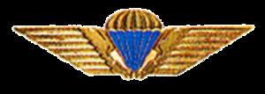 Bjørn Bisserup - Image: Danish Parachutist Badge