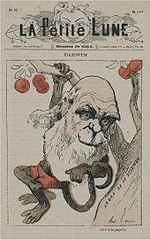 Darwin datant en ligne salle de bain évier plomberie brancher