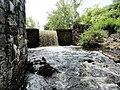 Davidson Mill Pond Park, South Brunswick, New Jersey USA July 15th, 2013 - panoramio (20).jpg