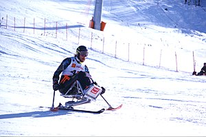 Outrigger ski - Australian skier David Munk goes down a hill at the Winter Paralympics with the aid of outriggers