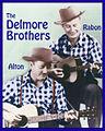 Delmore Blue checks border color pic.jpg