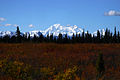Denali National Park and Preserve AK2006-0363.jpg