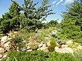 Denver Botanic Gardens - DSC01029.JPG