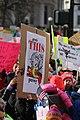 Denver Women's March 2017 Democracy in Action (32450386095).jpg