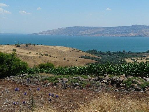Der See Genezareth vom Berg der Seligpreisungen (4213049264)