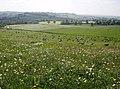 Descent towards Wyke Champflower - geograph.org.uk - 460308.jpg
