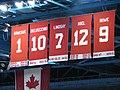 Detroit Red Wings banner.jpg