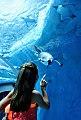 Detroit Zoo-PPCC.jpg