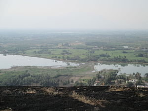 Dindigul - A view of Lake and paddy fields in Dindigul as viewed from Dindigul fort