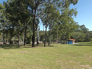 Helensvale, Queensland - Discovery Park, 2015