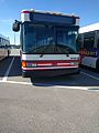 Disney Bus Number 4938-06 (30823758434).jpg