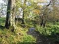 Downstream - geograph.org.uk - 287695.jpg