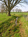 Drainage Ditch near Great Ailies Farm - geograph.org.uk - 383732.jpg