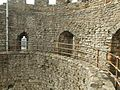 Dudley Castle ruins -England-6.jpg
